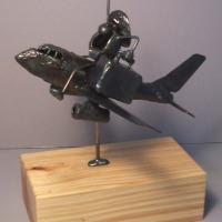 Pilot riding plane